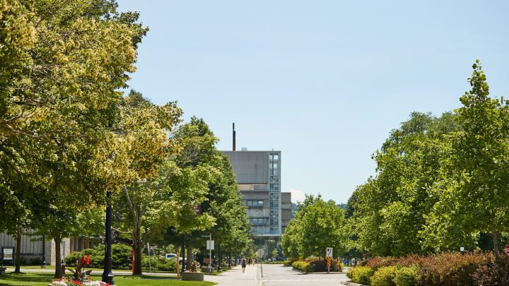 McMaster in the summer